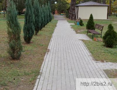 фото-садовые-дорожки-своими-руками-5