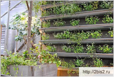 Вертикальное озеленение на даче в фото-3