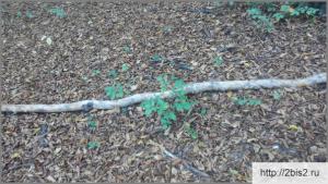Качели из дерева своими руками